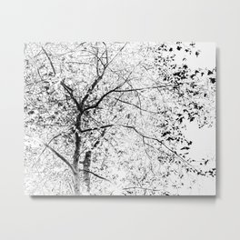 Abstract Black and White Tree Photograph Metal Print