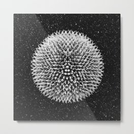 Spiked ball Metal Print