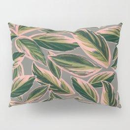 Calathea Leaves Pattern- Pink Green Gray Pillow Sham