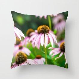 Echinacea Blossom Throw Pillow