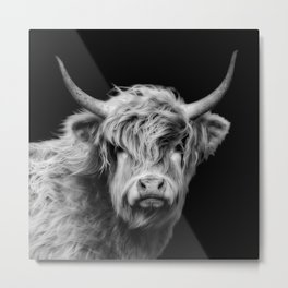 Highland Cow Black And White Metal Print