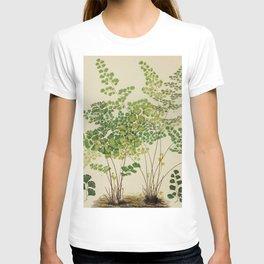 Maidenhair Ferns T-shirt