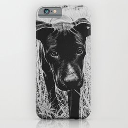Doggy in the Field // B&W Hiking by Rustic Abandoned Log Cabin Summit Colorado iPhone Case