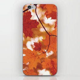 Fluttering from the Autumn tree iPhone Skin