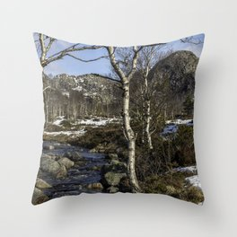 Birch trees grow on a mountain river. Throw Pillow