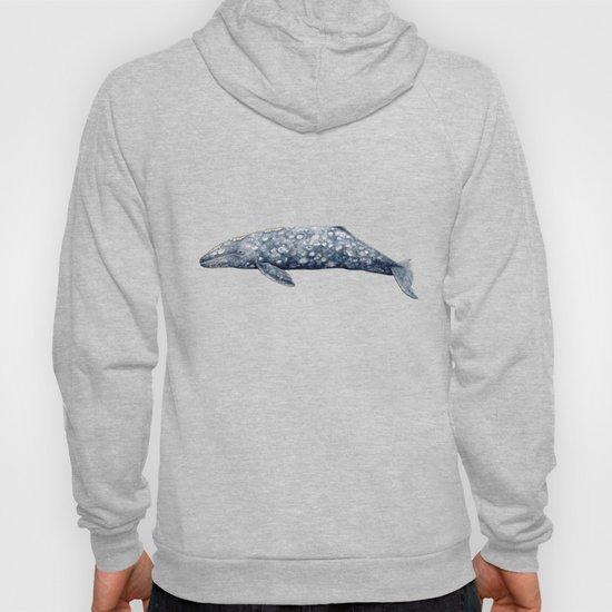 Grey whale by chloeyzoard
