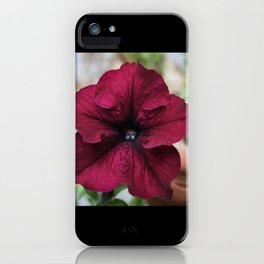 """""""Gorgeous Flower"""" by Madrone Candea iPhone Case"""
