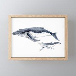 Humpback whale with calf Framed Mini Art Print