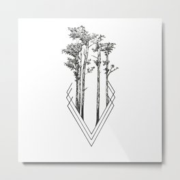 Daily Forest Metal Print