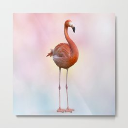 digital painting of Pink flamingo Metal Print