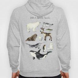 Arctic & Antarctic Animals Hoody