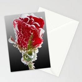 Rose Bubbles Stationery Cards