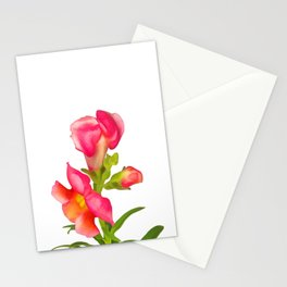 Pink Snapdragon Stationery Cards