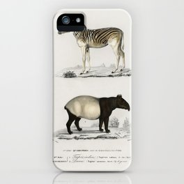 Malayan Tapir (Equus Montanus) and Mountain Zebra (Dauw) illustrated by Charles Dessalines D' Orbign iPhone Case