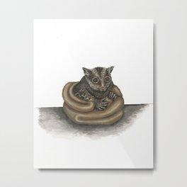Cute Sugar Glider Metal Print