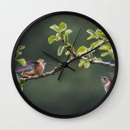 Rufous Hummingbird at Large, No. 2 Wall Clock