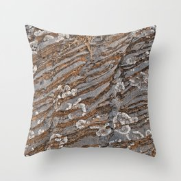 Cracked Stone Striations Throw Pillow
