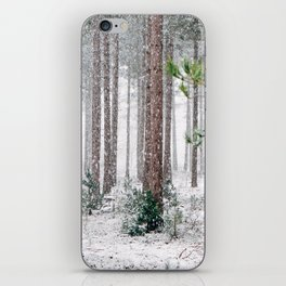 Snowy Pine trees iPhone Skin