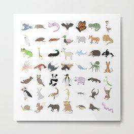 Animals Metal Print