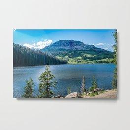 Beartooth Mountains Montana Wilderness Lake Metal Print