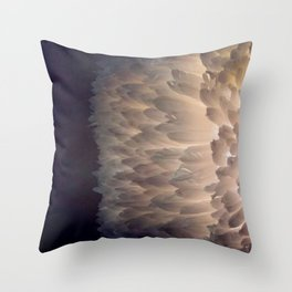 Soft light through the feathers Throw Pillow