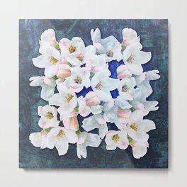 Apple blossom on dark blue Metal Print