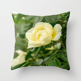 City of York Rose Throw Pillow