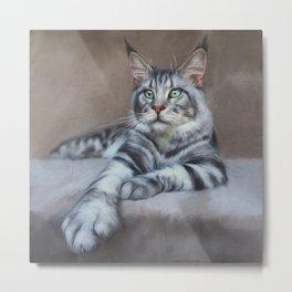 Maine coon - grey cat - cat art - big cat Metal Print