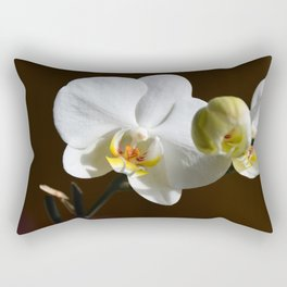 The beauty of a White Orchid (Phaleanopsis) Rectangular Pillow