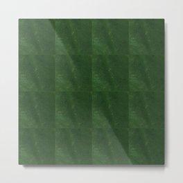 Cactus Green Backdrop Metal Print