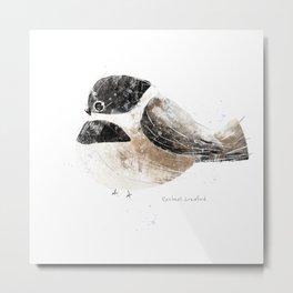 Black Capped Chickadee Bird Illustration   Metal Print