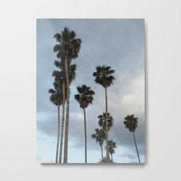 L.A. Palm Trees Sunset Boulevard, Photography Metal Print