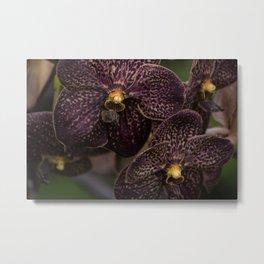 Deep Purple Orchids Metal Print