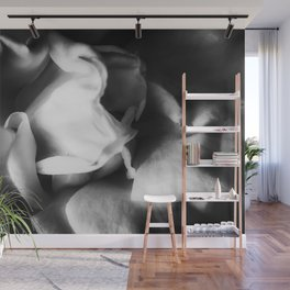 rose texture abstract background in black and white Wall Mural