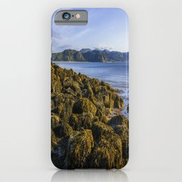 West Shore iPhone Case