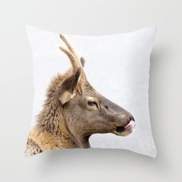 Watercolor Elk Juvenile 09, Estes Park, Colorado, Taster-snot Throw Pillow