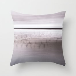 Seaguls in winter. Throw Pillow