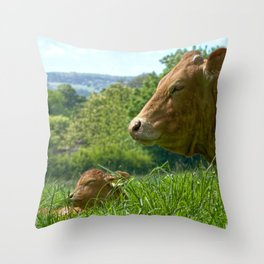Happiness Is A Snooze  Throw Pillow