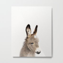 Baby Donkey, Baby Animals Art Print By Synplus Metal Print