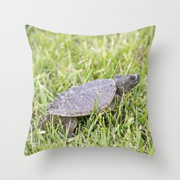 Snapping Turtle 1 Throw Pillow