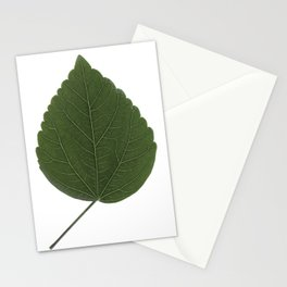 look closer HIBISCUS 3/3 Stationery Cards