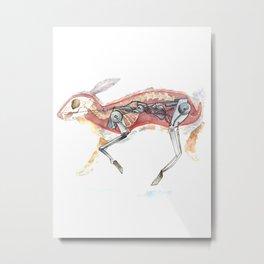 Rabbit's Driver Metal Print