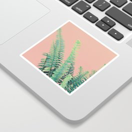 Ferns on Blush Sticker