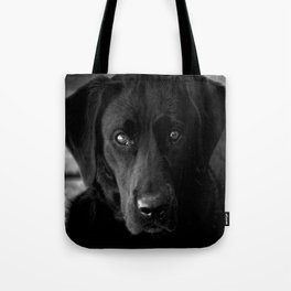 Loyalty  Black Lab  Tote Bag