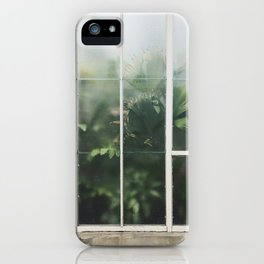 Hot House Window with Jungle of Palms Photograph iPhone Case