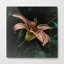 In The Dark Metal Print