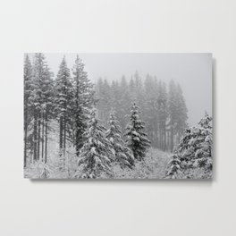 It's Snow Time - 35/365 Metal Print