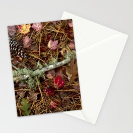 The Fall Collection Stationery Cards