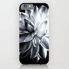 Black And White Dahlia iPhone Case