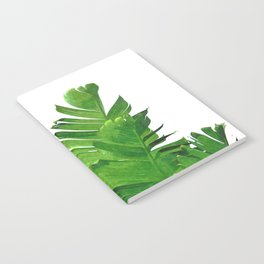 Palm banana leaves tropical watercolor illustration Notebook